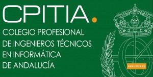 profesionales-colegiados-informatica-300x152